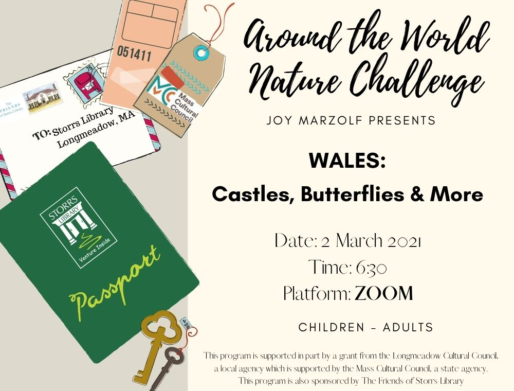 Flyer for Wales