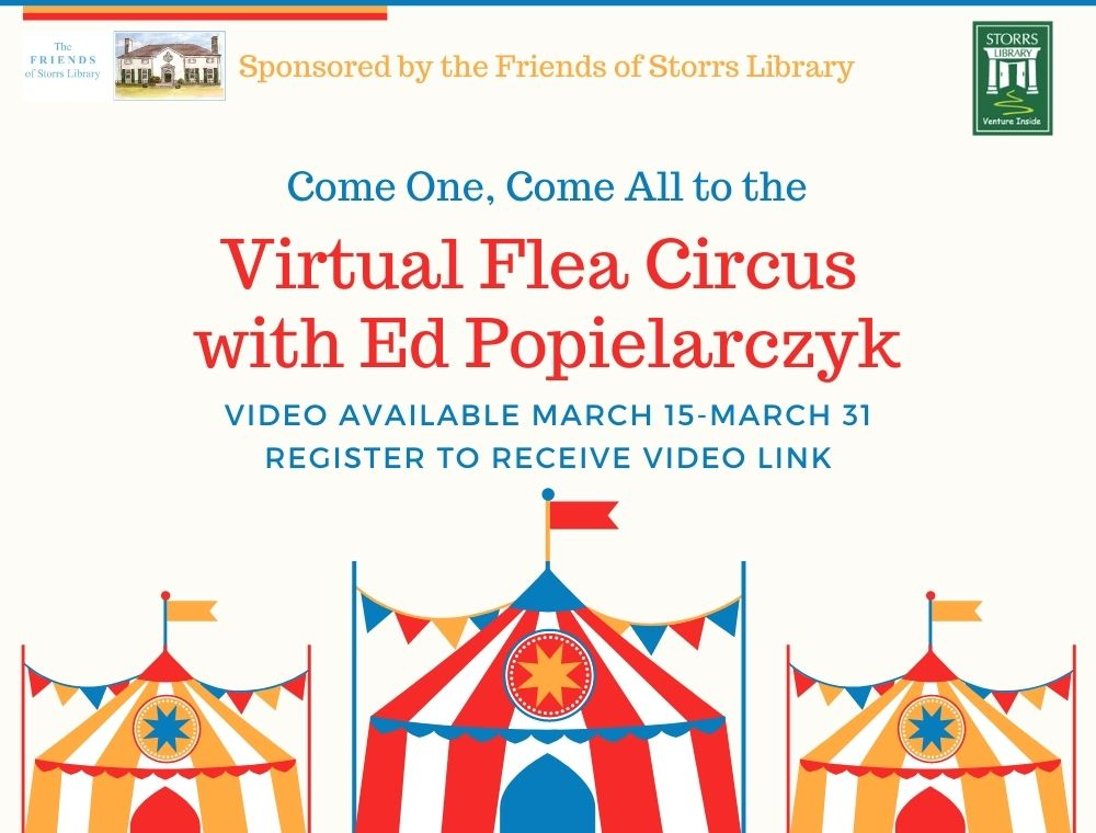 Flyer for Virtual Flea Circus