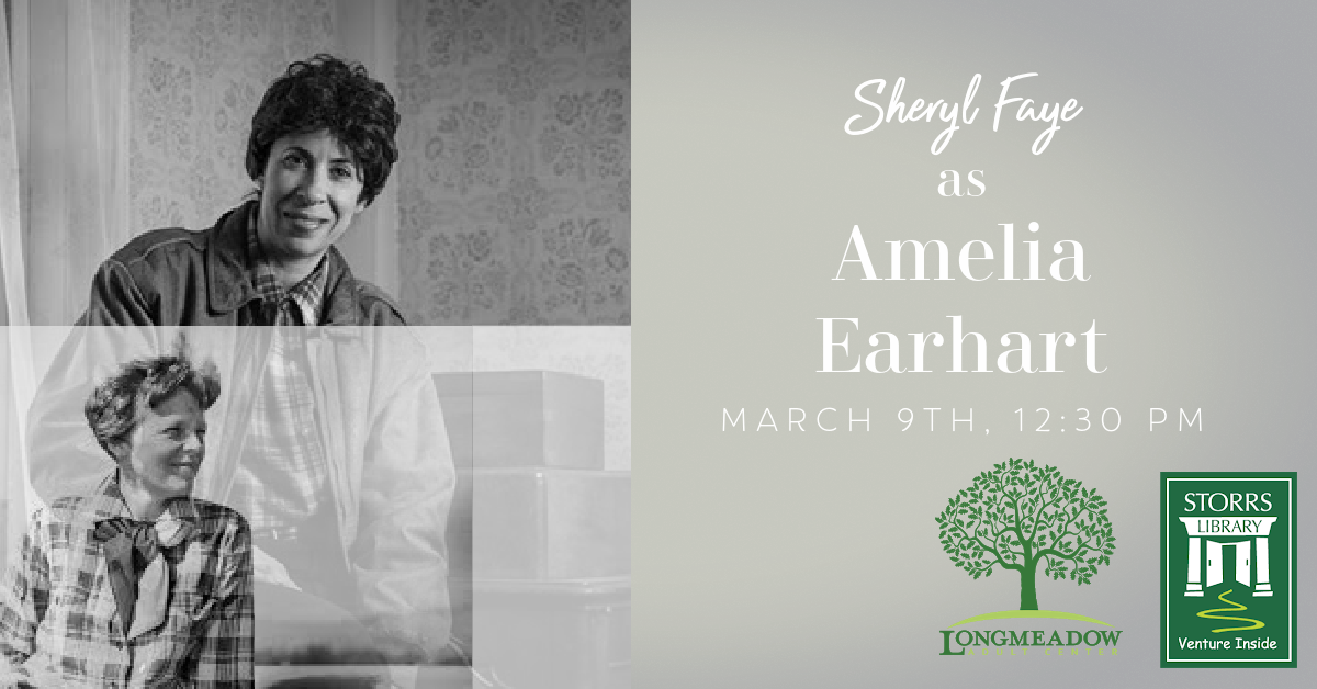 Flyer for Sheryl Faye as Amelia Earhart