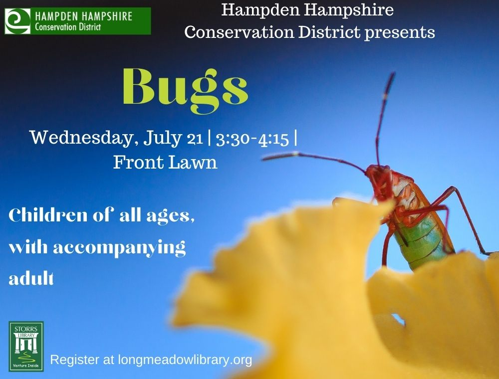 Flyer for HHCD Bugs