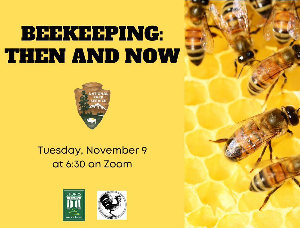 Flyer for Beekeeping: Then and Now